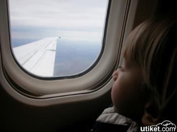 The Reason Window Coverings When Take-Off and Landing