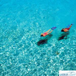 Tempat Snorkeling Terbaik di Indonesia